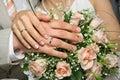 Hands newlyweds Stock Photos