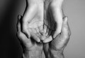 Hands of the old and the young man Royalty Free Stock Photo