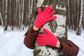 Hands in red gloves embrace birch Royalty Free Stock Photos