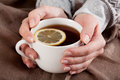 Hands with tea cup hot lemon closeup Royalty Free Stock Photography