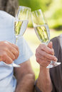 Hands toasting champagne flutes at park closeup of the Royalty Free Stock Image
