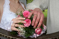 Hands with wedding rings of the groom and the bride Stock Images