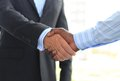 Handshake closeup of a business hand shake between two colleagues Royalty Free Stock Image