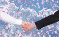 Handshake Royalty Free Stock Photo