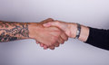 Handshake white people one tattooed are shaking hands Stock Photography