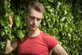Handsome blond young man against wall of green ivy attractive looking down Royalty Free Stock Photos