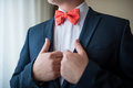 Handsome elegant young fashion man in classical suit costume, shirt and red bow tie