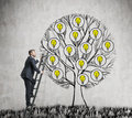 A handsome entrepreneur is climbing to the drawn tree with light bulbs. Royalty Free Stock Photo