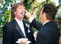Handsome gay couple shares wedding cake one groom playfully puts on his husband s nose at their Royalty Free Stock Images