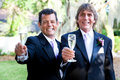 Handsome gay wedding couple toasting their marriage champagne Royalty Free Stock Photography