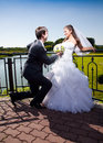 Handsome groom kneeling in front of bride at park portrait Royalty Free Stock Photo