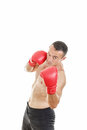 Handsome muscular male boxer ready to fight with boxing gloves in a combat stance Royalty Free Stock Photography