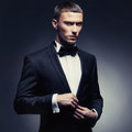 Handsome stylish man portrait of in elegant black suit Royalty Free Stock Photo