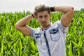 Handsome young man in corn field Royalty Free Stock Photo