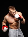 Handsome young muscular man wearing boxing gloves Royalty Free Stock Photography