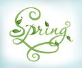 Handwriting word spring made green stem leaves Royalty Free Stock Photography