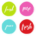 Handwritten words Fresh, Pure, with color circle brush stroke backgrounds. Vector illustration