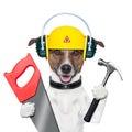 Handyman dog Royalty Free Stock Photo