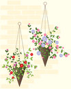 Hanging basket Royalty Free Stock Photo