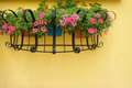 Hanging basket of flower on wall Stock Photos