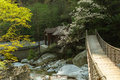 Hanging bridge a on the river in the mountains Stock Photography