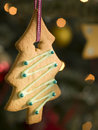 Hanging Christmas Tree Biscuit Stock Images