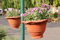 Hanging flower pots Royalty Free Stock Images