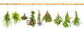 Hanging fresh herbs basil, sage, thyme, dill, mint, lavender Royalty Free Stock Photo