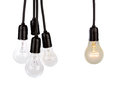 Hanging light bulbs on white background Royalty Free Stock Photography