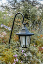 Hanging light in a garden Stock Image