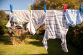 Hanging out to Dry Royalty Free Stock Photo