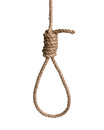 Hangman's knot Royalty Free Stock Photo