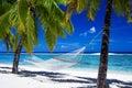 Hangmat tussen palmen op tropisch strand Stock Afbeeldingen