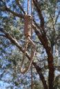 Hangmen Noose Royalty Free Stock Photo