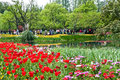 Hangzhou taiziwan park tulips in full bloom the april china tulip every year attracts many Stock Photo