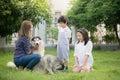 Happy Asian family playing with siberian husky dog Royalty Free Stock Photo