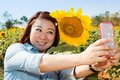 Happy asian woman selfy with sun flower in sunflower flower fiel Royalty Free Stock Photo