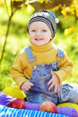 Happy baby boy in fall time on the sunny meadow Stock Photos