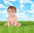 Happy Baby on Nature Grass Royalty Free Stock Images