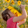 Happy baby smelling sunflower Royalty Free Stock Photography