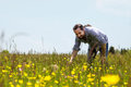 Happy bearded man on a wonderful flower meadow Stock Images