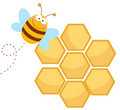 Happy bee by a honeycomb Royalty Free Stock Photo