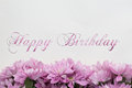 Happy birthday card with flowers Royalty Free Stock Photo