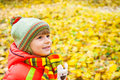 Happy boy in autumn park smiling Royalty Free Stock Images