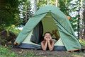 Happy boy in camping tent Stock Photo