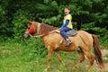 Happy boy riding a horse Royalty Free Stock Photo
