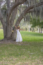 Happy bride by a giant tree in a park confident looking posing the distance spanish moss nature Stock Photo