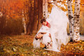 Happy bride and groom dancing in autumn park Royalty Free Stock Photo