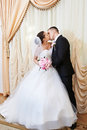 Happy bride and groom kissing on solemn registration of marriage Royalty Free Stock Images