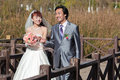 Happy bride and groom walking over bridge (2) Royalty Free Stock Photos
